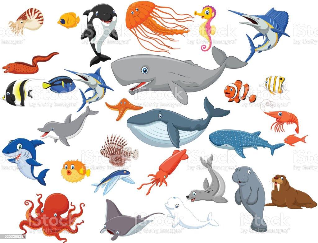 Cartoon sea animals isolated on white background vector art illustration