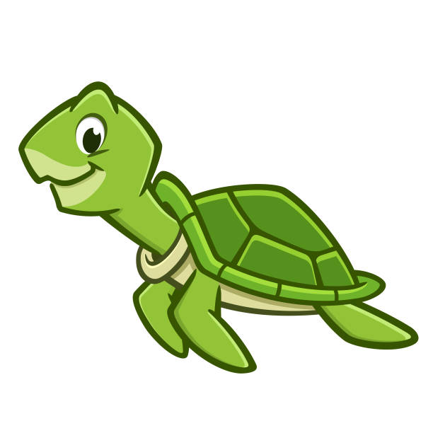cartoon sea turtle - reptiles stock illustrations
