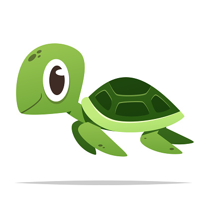 Cartoon sea turtle vector isolated illustration