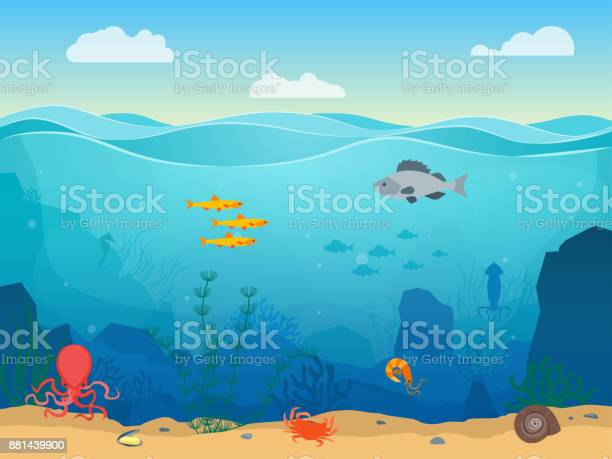 Cartoon sea underwater scene color background vector vector id881439900?b=1&k=6&m=881439900&s=612x612&h=khomielgxaygfagt0irmfxxajaslmricx6awsqj5g8a=