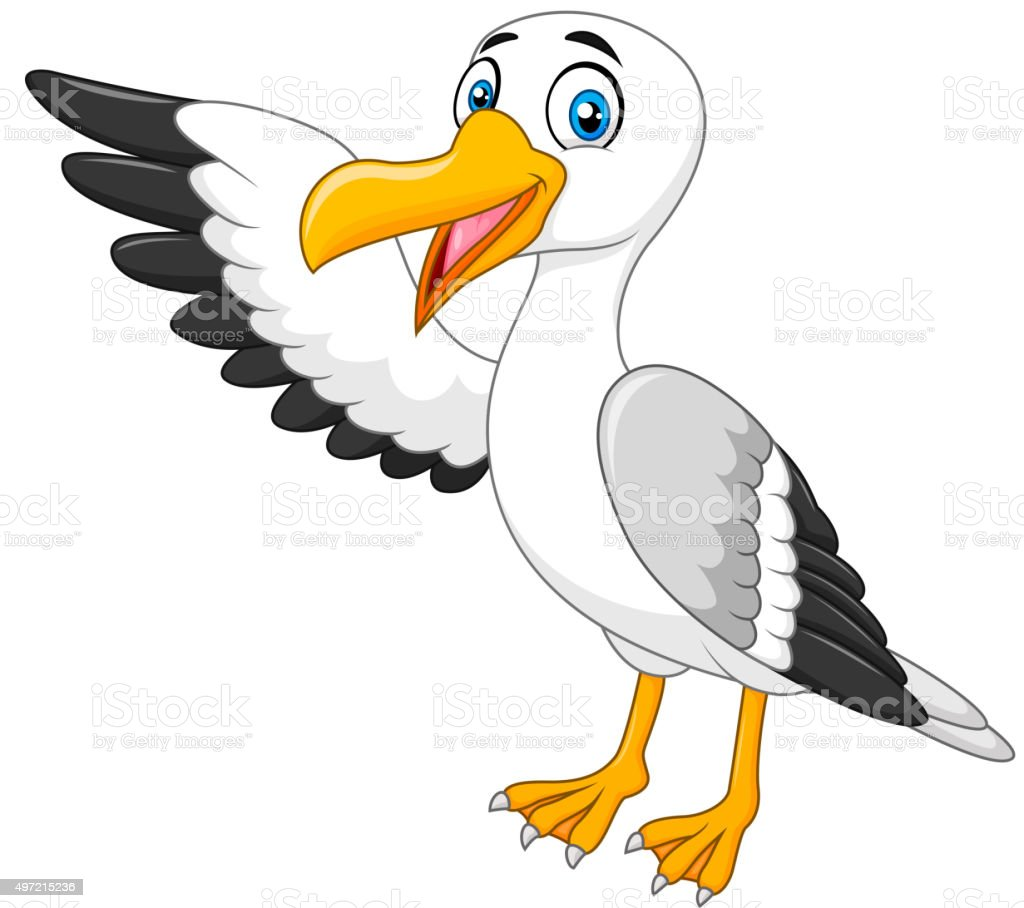 Cartoon seagull presenting isolated on white background vector art illustration