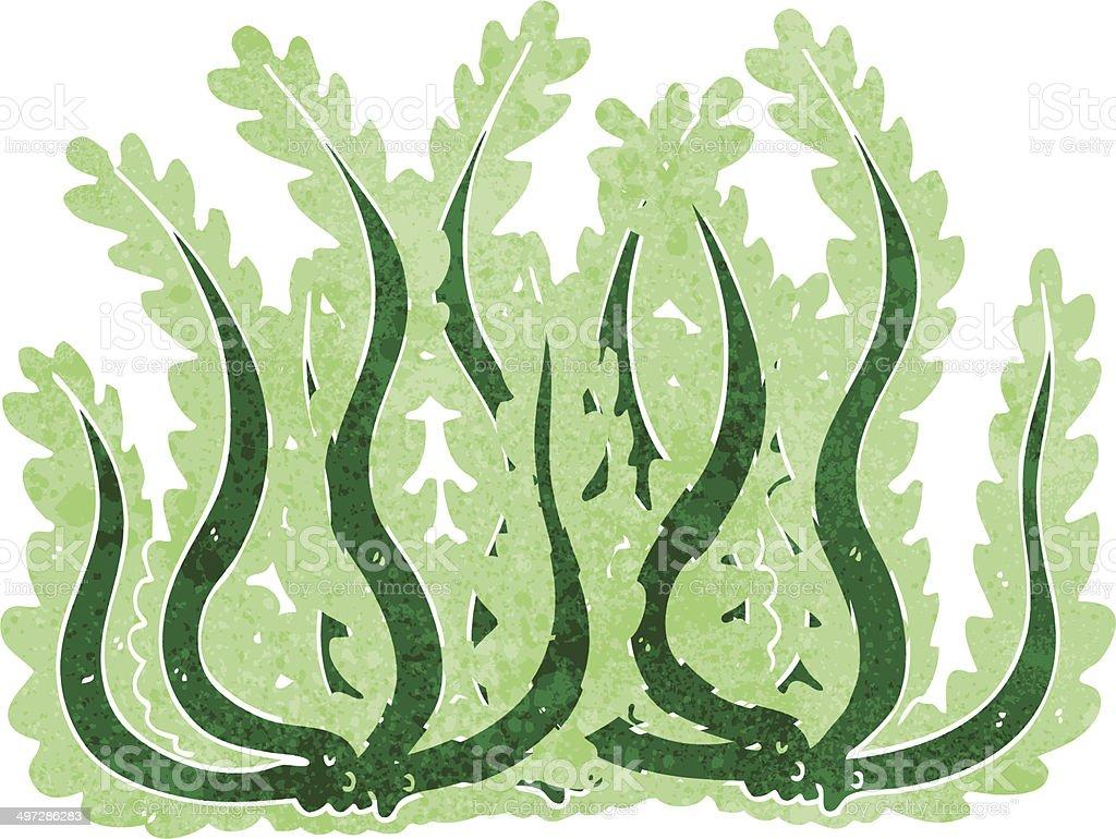 Fumetto Di Alghe Marine Immagini Vettoriali Stock E Altre Immagini