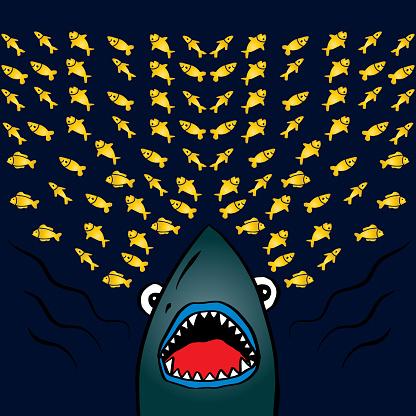 Cartoon shark t-shirt print design.