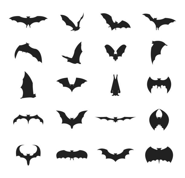 cartoon silhouette black different bats icon set. vector - bat stock illustrations