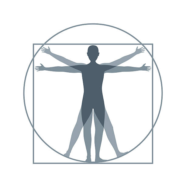 Cartoon Silhouette Vitruvian Man. Vector vector art illustration