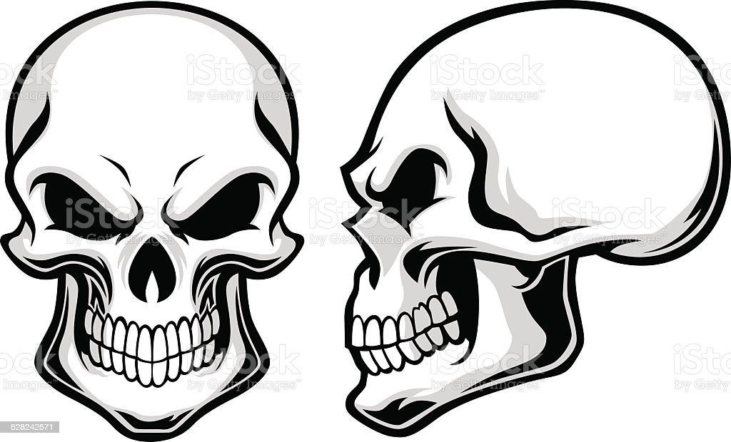 cartoon skulls stock vector art more images of adult 528242571 rh istockphoto com free download skull vector vector skull frameset