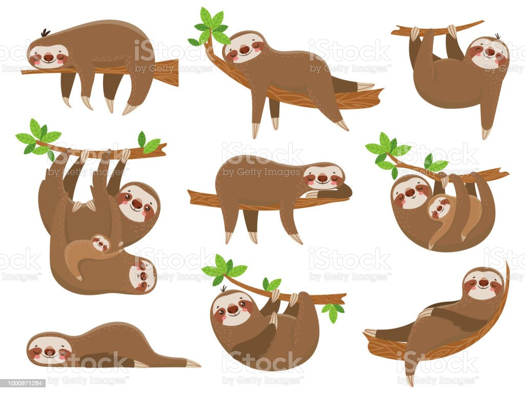 Cartoon sloths family. Adorable sloth animal at jungle rainforest. Funny animals on tropical forest trees vector set vector art illustration