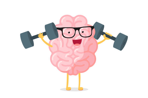 ilustrações de stock, clip art, desenhos animados e ícones de cartoon smart strong human brain character with glasses power training concept. rock erudition intellect with dumbbells. central nervous system organ education funny flat vector illustration - active brain