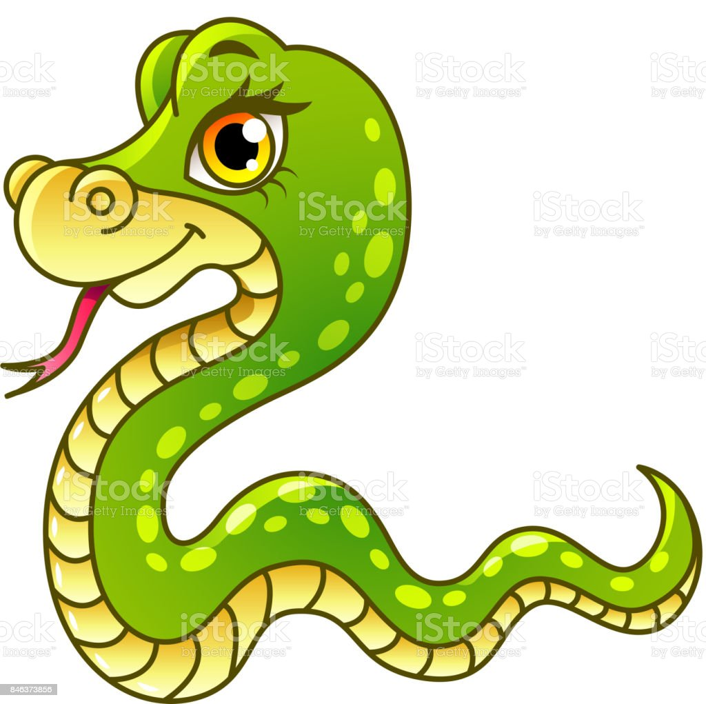 Cartoon snake isolated vector illustration vector art illustration