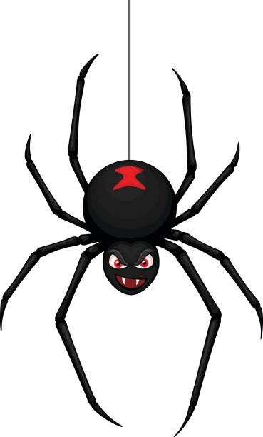 蜘蛛の糸 イラスト素材 Istock