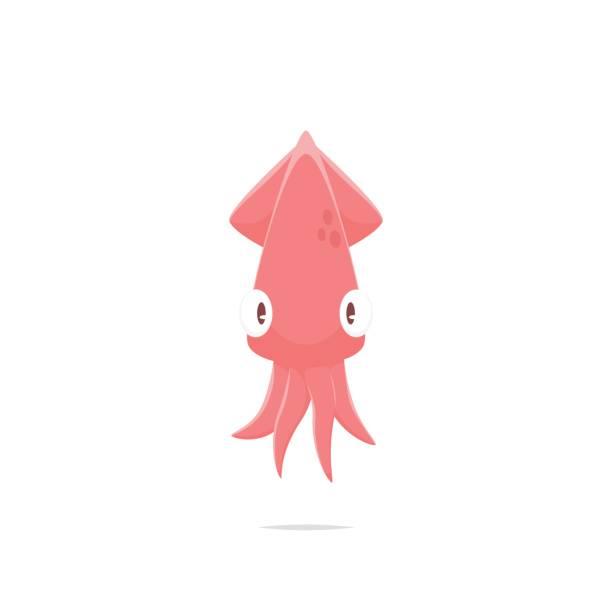 cartoon tintenfisch vektor isoliert - kalamar stock-grafiken, -clipart, -cartoons und -symbole