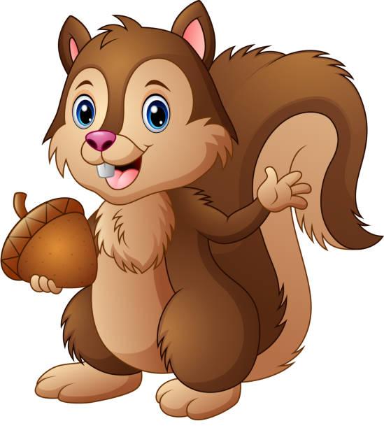 illustrations, cliparts, dessins animés et icônes de écureuil de dessin animé tenant un gland - écureui