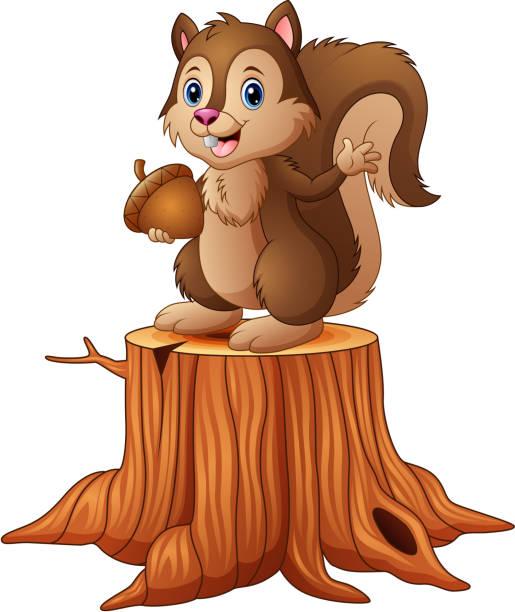 cartoon squirrel standing on tree stump holding an acorn - wood texture stock illustrations