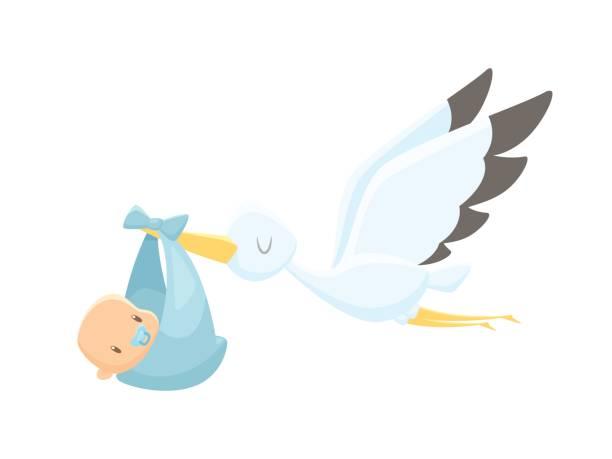 cartoon stork carrying baby vector illustration - new born baby stock illustrations
