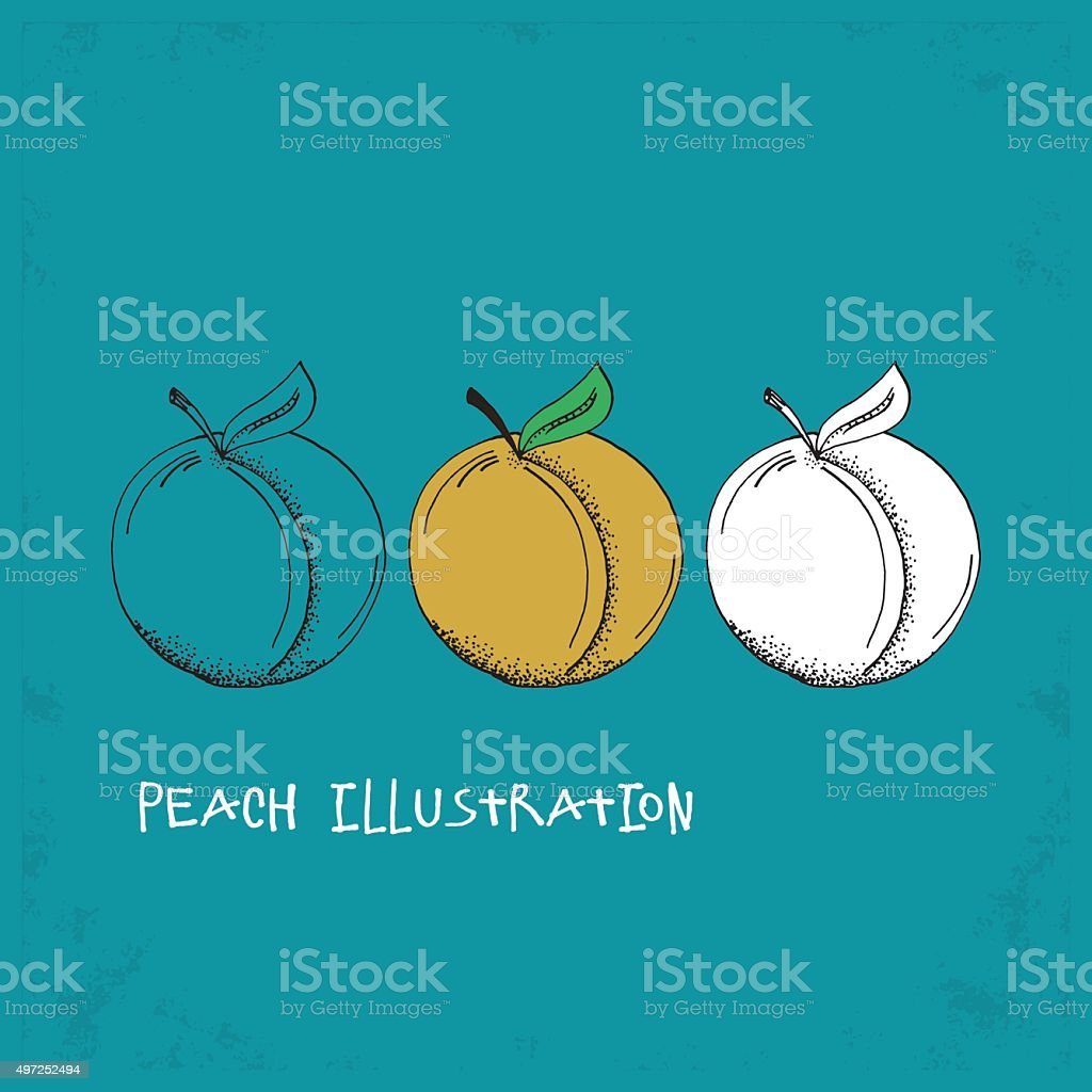 Cartoon Style Peach Illustration vector art illustration
