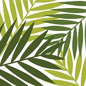 A cartoon template of jungle leaves
