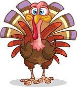 Cartoon Thanksgiving turkey isolated on white. Vector