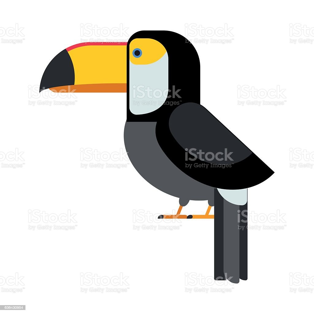 Cartoon toucan vector isolated birds vector art illustration