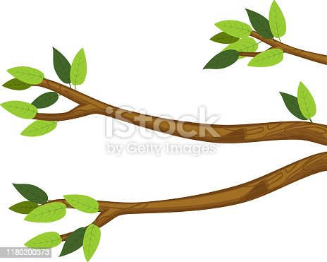 istock Cartoon tree branches with green leaves isolated on white background 1180200373