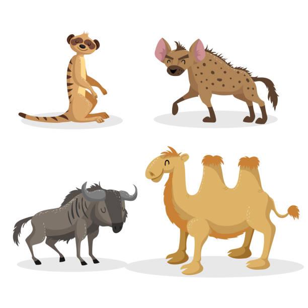 stockillustraties, clipart, cartoons en iconen met cartoon trendy-stijlenset afrikaanse dieren. hyena's, wildebeest, meerkat en bactrische kameel. gesloten ogen en vrolijke mascottes. wildlife vectorillustraties. - hyena