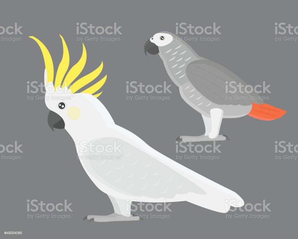 Cartoon tropical cockatoo parrot wild animal bird vector illustration vector art illustration