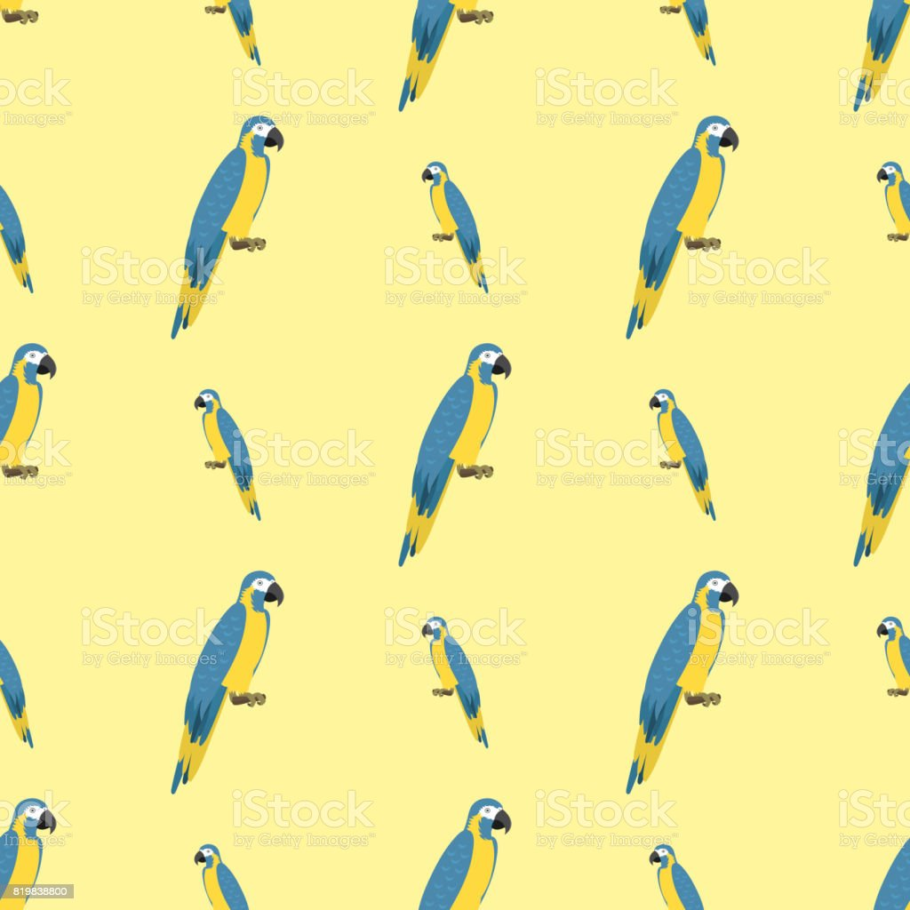Cartoon tropical parrot wild animal bird seamless pattern vector...