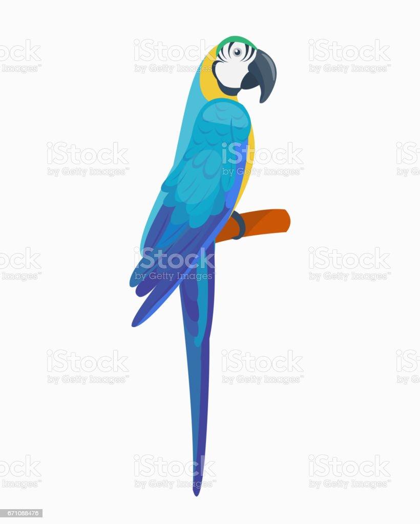 Cartoon tropical parrot wild animal bird vector illustration wildlife...