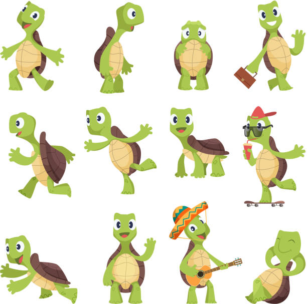 Cartoon turtles. Happy funny animals running tortoise vector collection Cartoon turtles. Happy funny animals running tortoise vector collection. Illustration of turtle friendly, tortoise active and energetic turtle stock illustrations