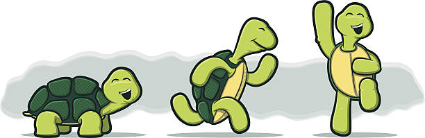 Cartoon Turtles on White Background vector art illustration