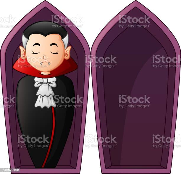 Coffin,dracula,black,casket,container - free photo from