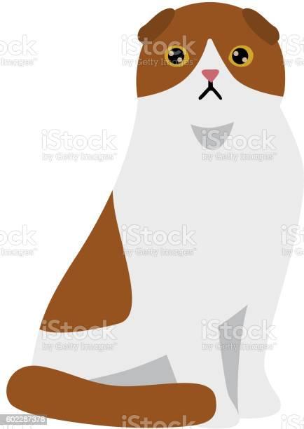 Cartoon vector cat character vector id602287378?b=1&k=6&m=602287378&s=612x612&h=tu13kjzhxveshpns2txojjsduwvoiwrftibxylhlmvk=