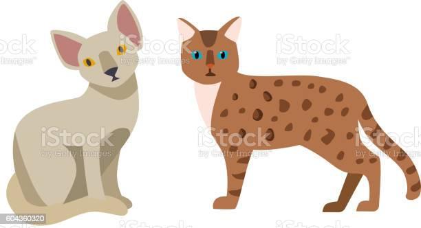 Cartoon vector cat character vector id604360320?b=1&k=6&m=604360320&s=612x612&h=6ssutyxlnveosj n9hey cgeeuacczb8 30fd1 nsro=