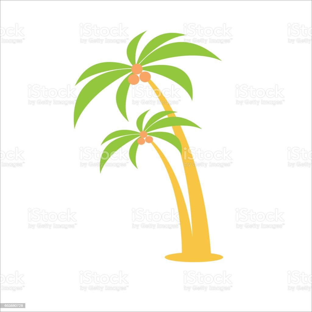 cartoon vector flat illustration two palm trees with coconuts