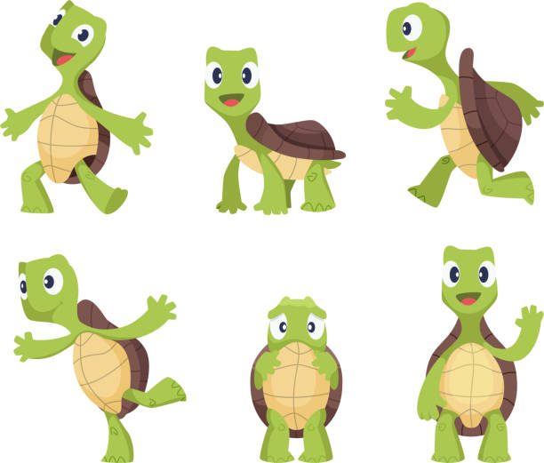 Cartoon vector turtle in various action poses Cartoon vector turtle in various action poses. Illustration of animal tortoise, reptile mascot caricature of collection turtle stock illustrations