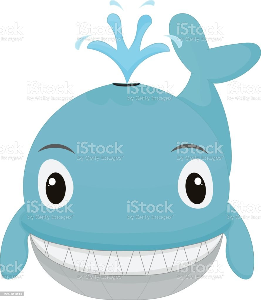 cartoon whale front view royalty free stock vector art