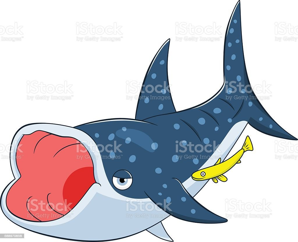 cartoon whale shark stock vector art 588970858 istock