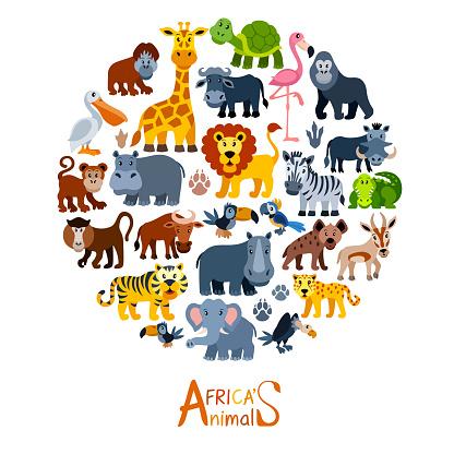 Cartoon Wild Animal Characters