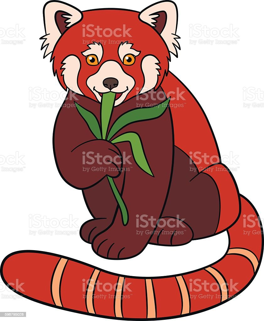 Cartoon Wild Animals Little Cute Red Panda Eat Leaves Stock Vector ...