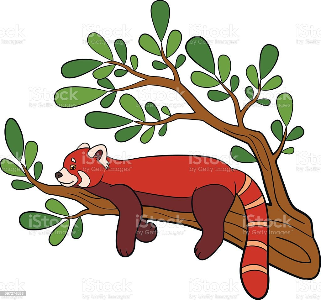 Cartoon wild animals. Little cute red panda smiles. Lizenzfreies cartoon wild animals little cute red panda smiles stock vektor art und mehr bilder von asien