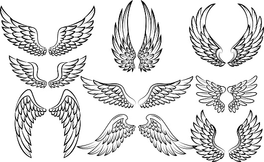 Vector illustration of Cartoon wings collection set
