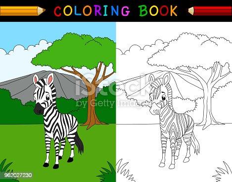 Vector illustration of Cartoon zebra coloring book