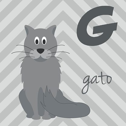 Cartoon zoo alphabet with animals. Spanish name: G for Gato