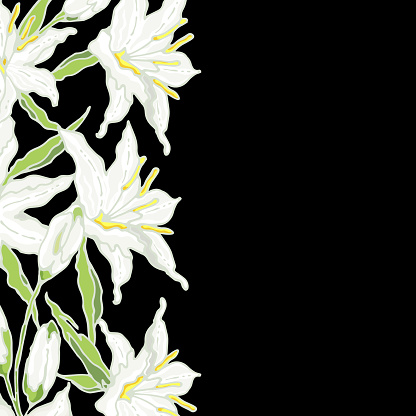 Casa Blanca Oriental Lily. Wedding invitation and greeting template. White Flowers, buds and leaves. Vector illustration.