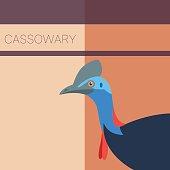 Cassowary Flat Postcard