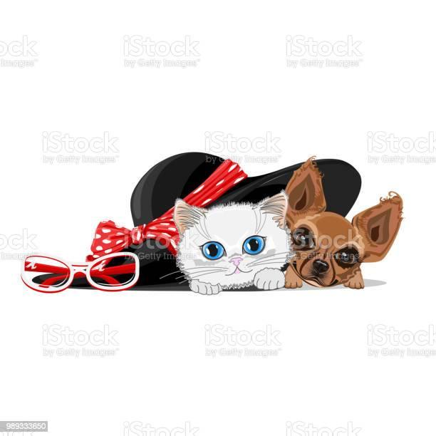 Cat and a dog in a big hat vector id989333650?b=1&k=6&m=989333650&s=612x612&h=k9avxa1xubk0jntb70hezay17ecq wdiygi6gzcm0rc=