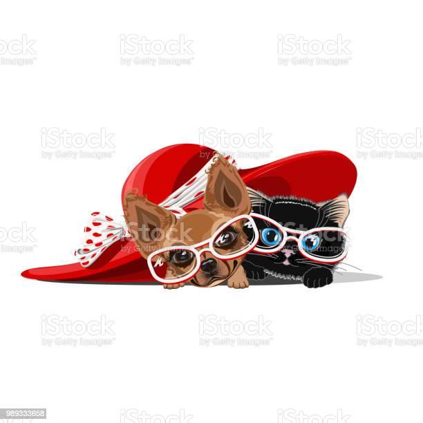 Cat and a dog in a big hat vector id989333658?b=1&k=6&m=989333658&s=612x612&h=uzsendpvyhuysflxgmwn2sprcyvqojbwgbpvmhgiqa0=