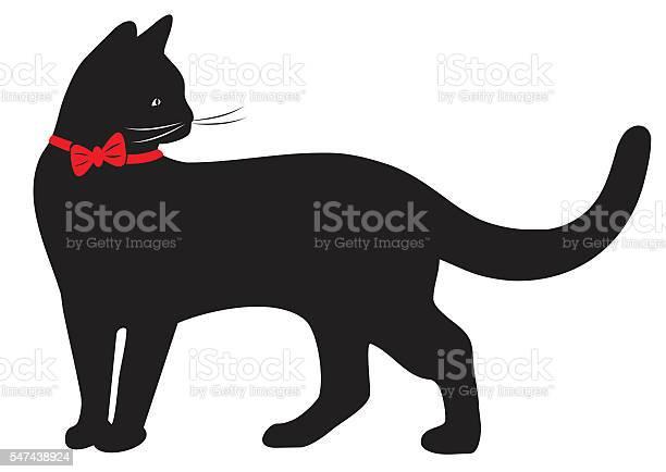 Cat and collar vector id547438924?b=1&k=6&m=547438924&s=612x612&h=afpnlh6y0ukdh5l4fg 2wqlfb0lsj1bo0msxkvnbrls=