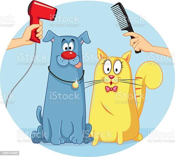 Cat and dog at pet salon vector cartoon vector id539440392?b=1&k=6&m=539440392&s=612x612&h=fqplfotps8s vjopmldhdpnwjftr2yorgxtflg7w3jg=