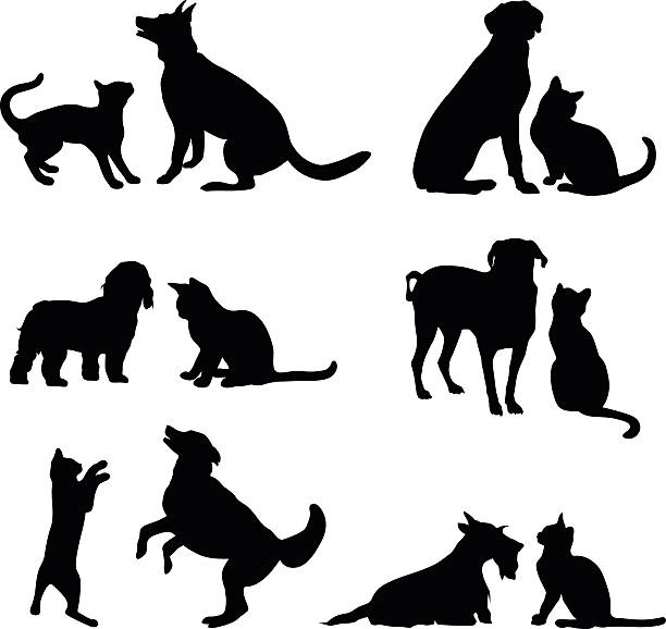 Cat And Dog Friends A vector silhouette illustration of multiple images of the freindship between a cat and dog either playing or posing together. dog stock illustrations