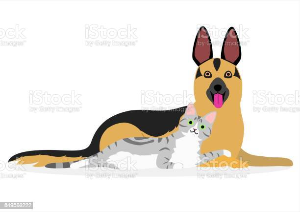 Cat and dog laying together vector id849566222?b=1&k=6&m=849566222&s=612x612&h=xn7hltmtl2ypmsdzvcnoh2lo lzovyuj7vq9rkinvfo=